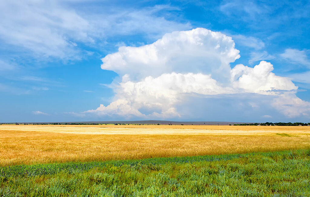 What are Land Trusts? A Brief Introduction