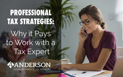 Professional Tax Strategies: Why it Pays to Work with a Tax Expert